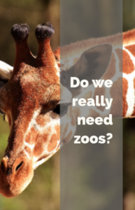 Do we really need zoos? -Hacking Parenthood