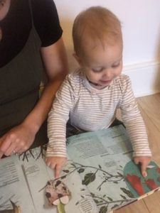 Young toddler pointing at images in a book