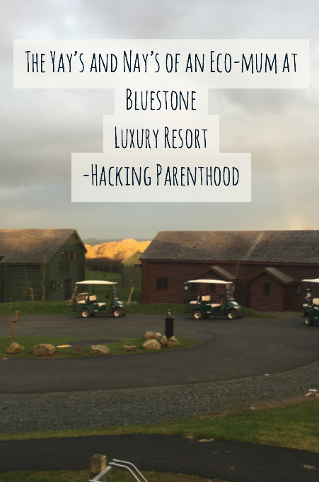 The Yay's and Nay's of an vegan at Bluestone Luxury Resort -Hacking Parenthood